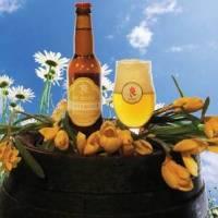 Winkel Bierbrouwerij De Roos weer geopend