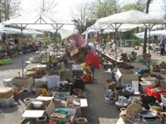 vlooienmarkt Concordia.jpg